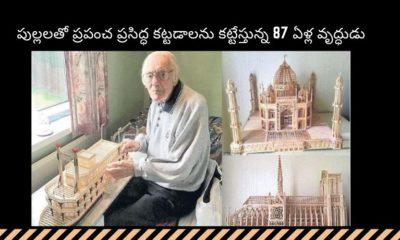 England Man Makes Taj Mahal Sticks