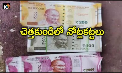 Garbage Currency Notes