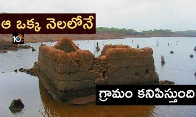 Salaulim river