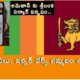Sri Lanka Flag Logo Bikinis And Doormats Amazon Sales