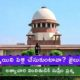 Supreme Court Asked Government Employee In Rape Case