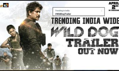 Wild Dog Trailer