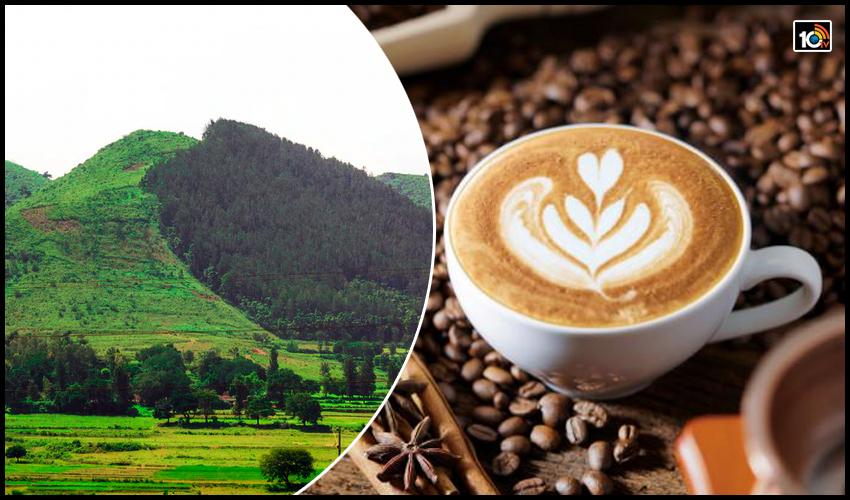 Demand For Araku Coffee1