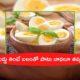 Egg Side Effects