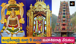 maha shivaratri festival at vijayawada