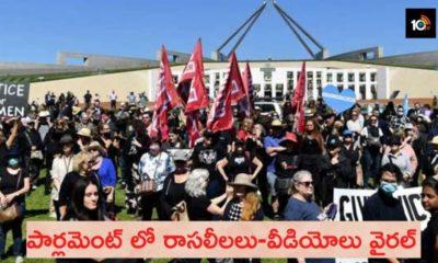 Parlament Sex Videos Australia