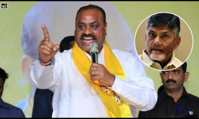 Sc And St Cases Against Chandrababu Are Part Of Partisan Activities1