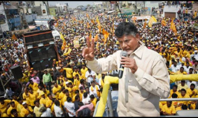 ysrcp-will-defeat-in-those-4-districts-says-chandrababu1