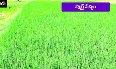 Agriculture With Help Of App