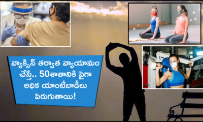 Exercise Higher Antibodies
