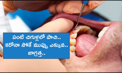 Gum Disease Covid Risk (1)