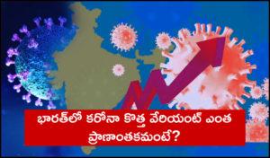 Indian Coronavirus Variant