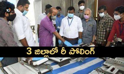 Mandal, Zila Parishad Election