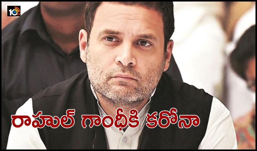 Rahul Gandhi Corona