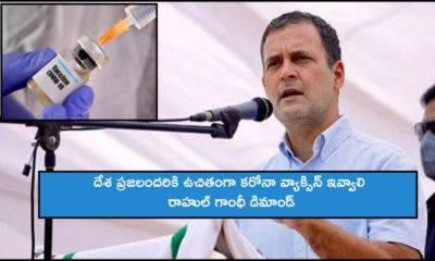Rahul Gandhi Demands Free Covid Vaccine For All (1)