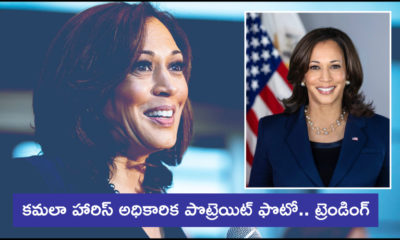 The White House Releases Official Kamala Harris Portrait (1)