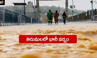 Tirumala Rain
