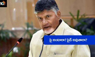 Zptc, Mptc Elections Chandrababu