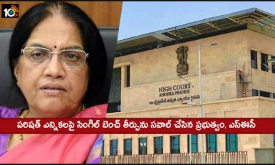 Ap Government Sec Challenging Single Bench Verdict On Parishad Elections