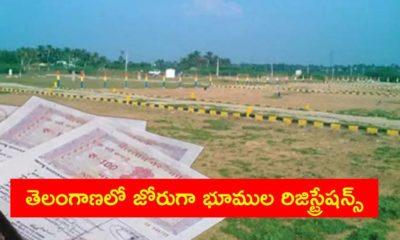 Land Registrations Huge