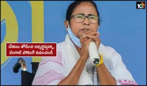 Mamata Banerjee Urges Ec With Folded Hands To Curtail Bengal Poll Schedule Amid Covid 19 Surge