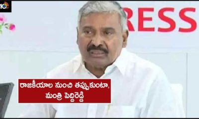 Minister Peddi Reddy Sensational Comments