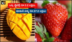 Most Expensive Fruits Rs 3 2 Lakh For A Single Strawberry Rs 37 2 Lakh For A Mango