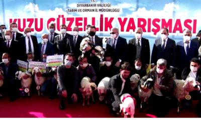 Turky1