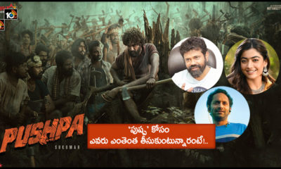 Unknow Facts About Pushpa Movie Team Remunerations