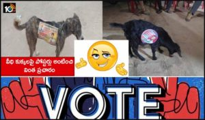 Up Panchayat Poll Candidates Apparently Stuck Campaign Posters On Stray Dogs