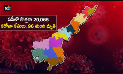 20065 New Corona Cases In Ap 96 Deaths