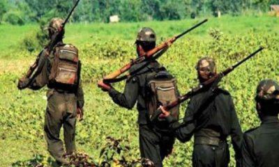 Maoist Corona