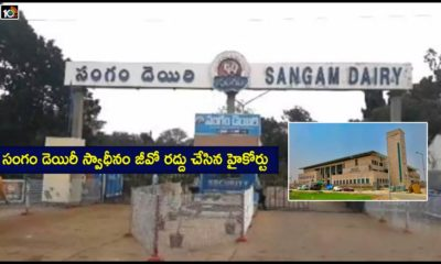 Sangam Dairy