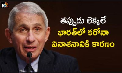 Americas Top Expert Dr Fauci Said India Relaxed The Corona Restrictions Ahead Of Time