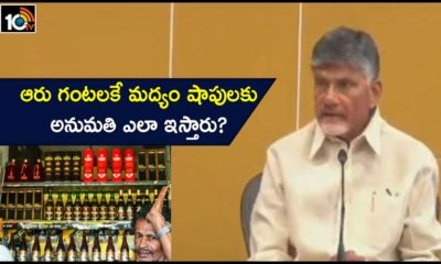 Chandrababu Naidu Slams Andhra Pradesh Govt Over Spread Of Covid Strain In Ap