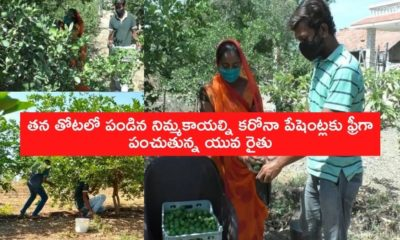 Farmer Giving Free Lemons To Corona Patients (1)