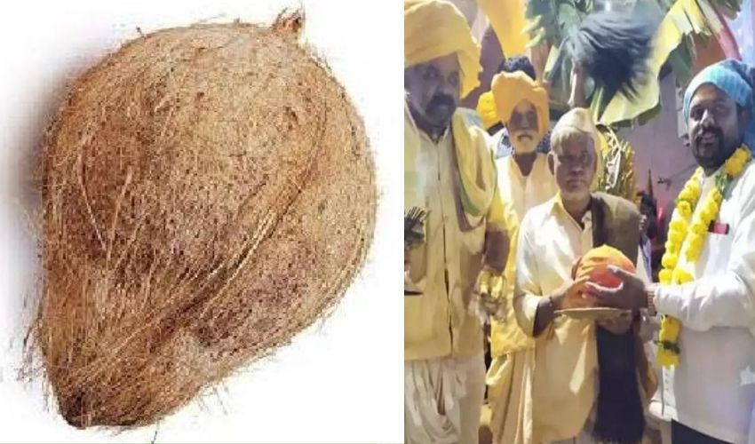 1 coconut Rs 6.5 lakh : ఒక్క కొబ్బరికాయ ధర రూ.6.5 లక్షలు..!