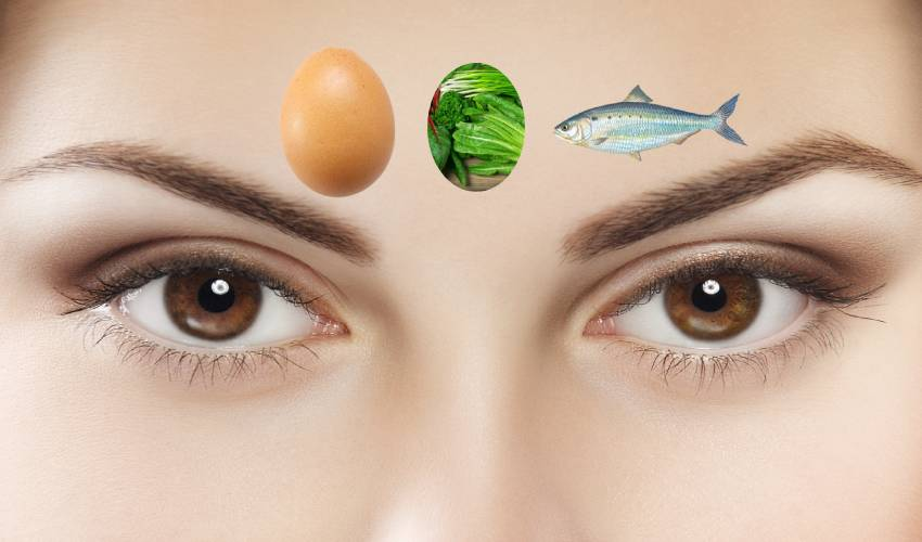 https://10tv.in/life-style/best-foods-for-eye-vision-274957.html