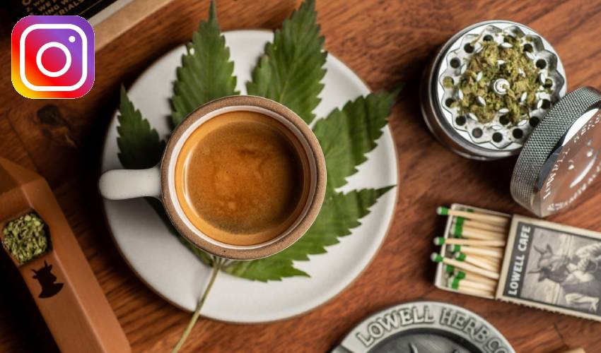 https://10tv.in/telangana/selling-marijuana-on-instagram-in-hyderabad-city-277165.html