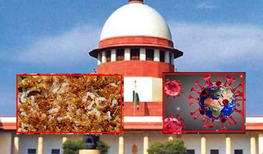 Red Ant Chutney : కరోనాకు నివారణగా ఎర్రచీమల చట్నీ.. సుప్రీంకోర్టు కీలక వ్యాఖ్యలు